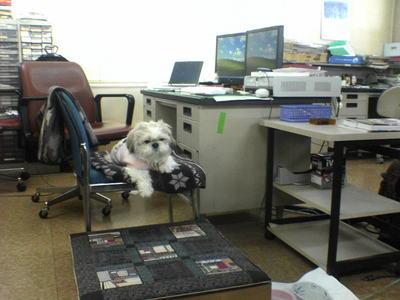 office1DSC02315.JPG