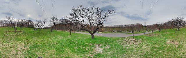 s-IMGP2147 Panorama.jpg