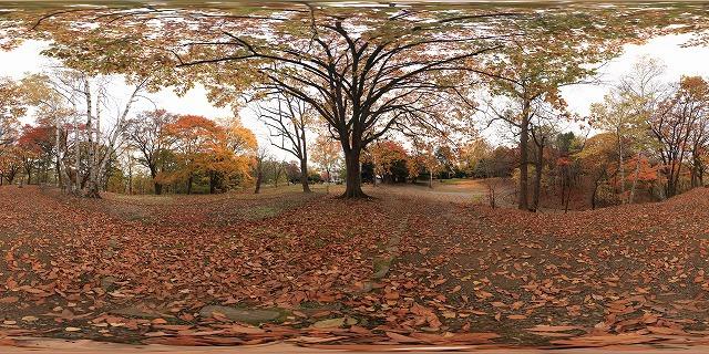 s-IMG_1242 Panorama.jpg