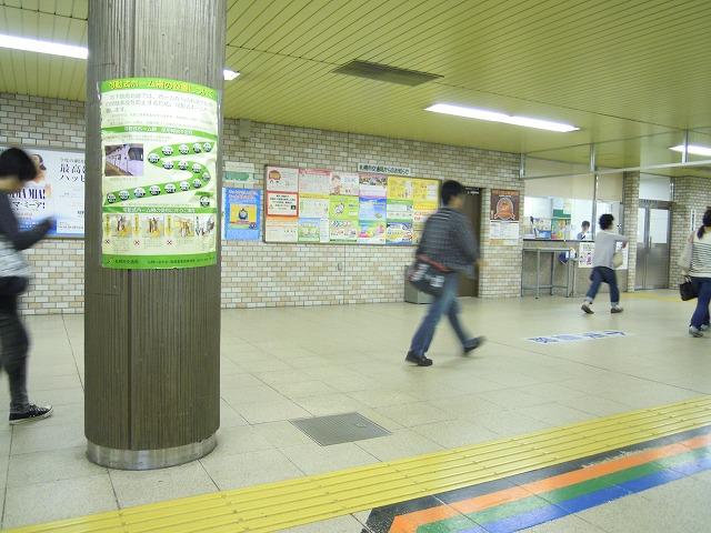 9DSCN0111.jpg