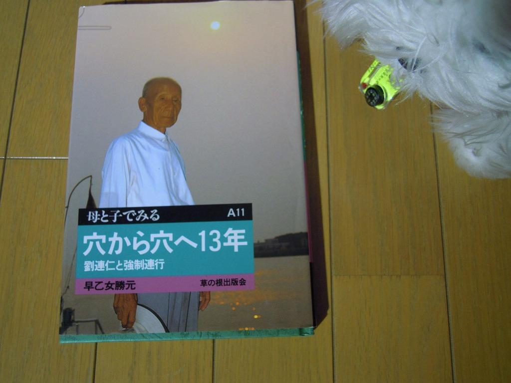 01DSCN0087.jpg