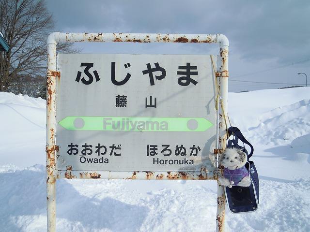 1fujiyamaDSCN1337.jpg