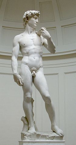 250px-David_von_Michelangelo.jpg